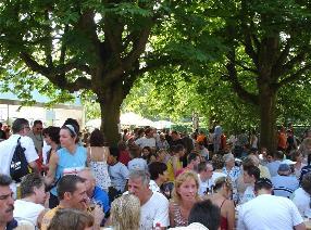 Bonames-Volkslauf-Baum