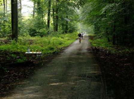 Egelsbach-Marathon-Wald