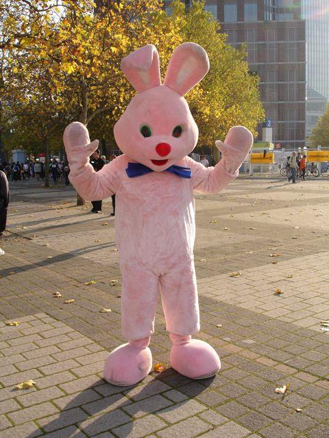 Frankfurt Marathon Hase