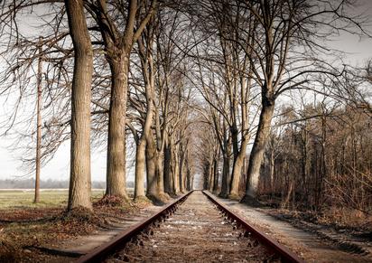 Ehemalige Rail-Marathon-Strecke zwischen Umstand und Haarzopf. © Giuseppe Porzani - Fotolia.com