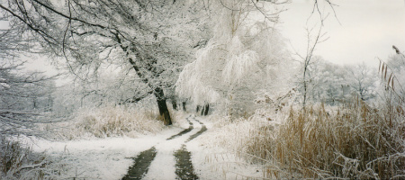 Laufen bei Kälte Titelbild
